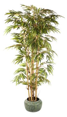 Бамбук искусственный в горшке
