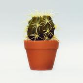 Искусственный цветок Succulent